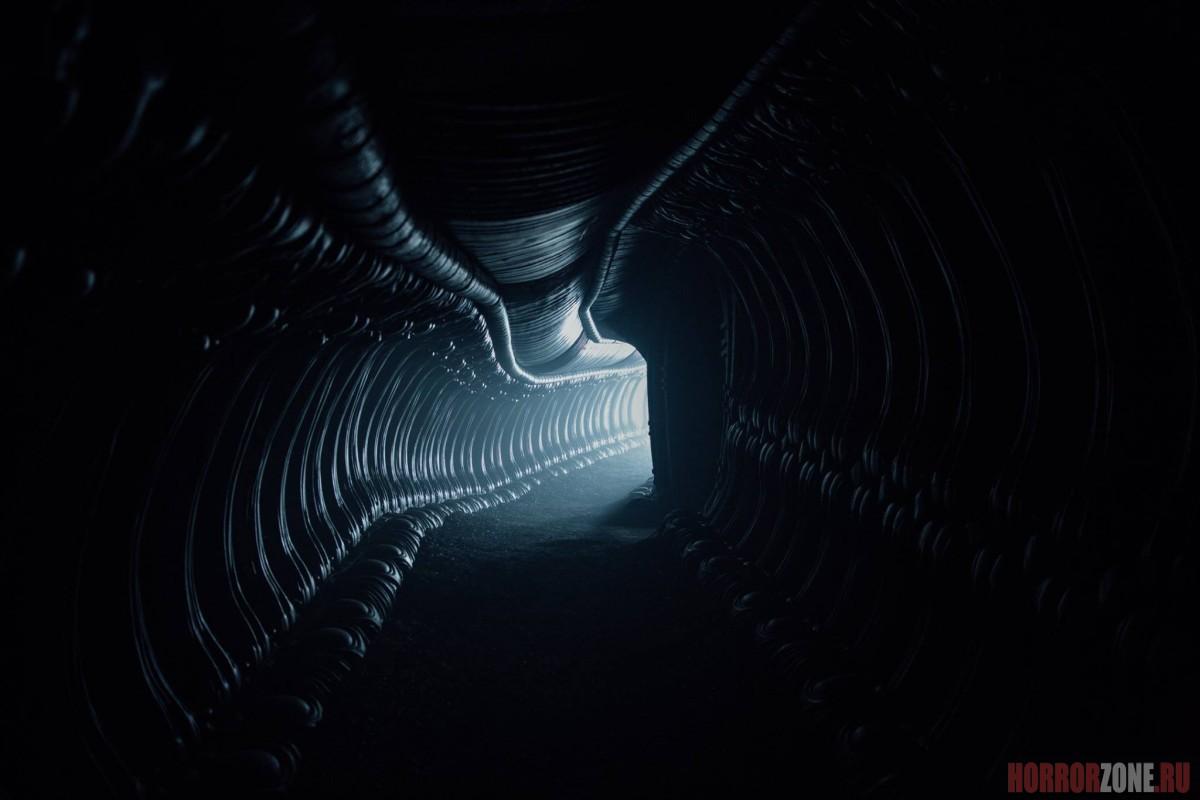 ЧУЖОЙ: ЗАВЕТ, кадр из фильма