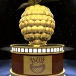 Золотая малина 2016: Все номинанты