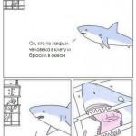 Эли Роту не дали снять фильм про гигантскую акулу за 150 миллионов долларов